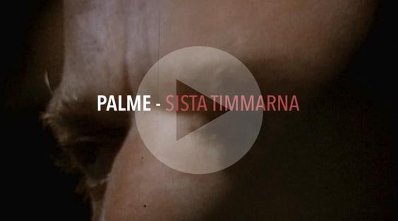 Drönarfoto Palme bio film